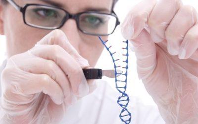 Comprehensive Genomic Characteristics