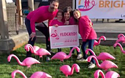 Flocks of Flamingos are BRIGHTening Lawns!
